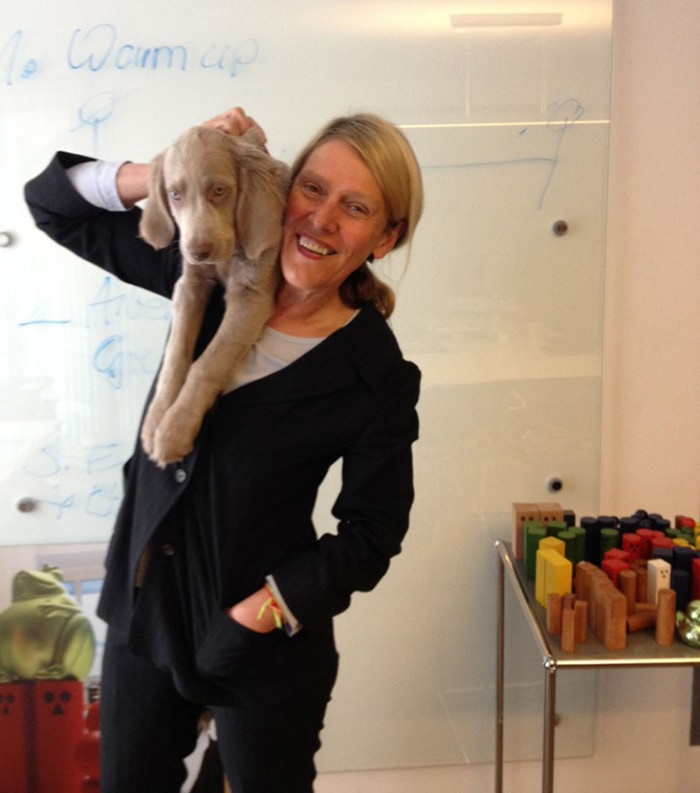 Die Hundedame Donna ist in unser Büro eingezogen